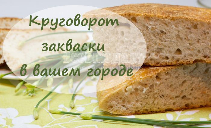 Круговорот закваски или где взять закваску для дрожжевого теста и хлеба в вашем городе?