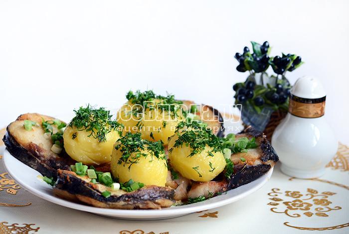 Сом жареный с картофелем и зеленью