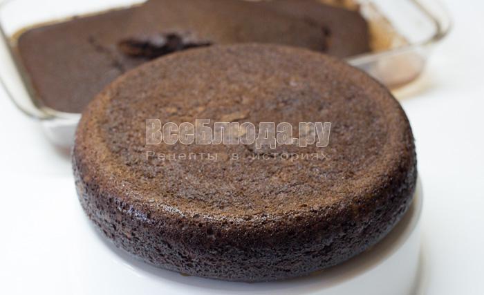 круглый шоколадный корж