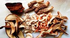Применение сушеных белых грибов в готовке