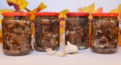 Консервирование опят с уксусом и подсолнечным маслом на зиму