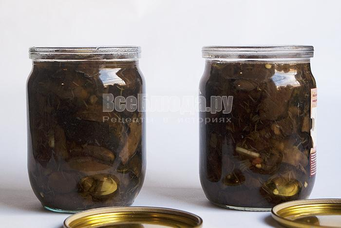 Гриб синеножка (рядовка лиловоногая) - консервирование по бабушкиному рецепту