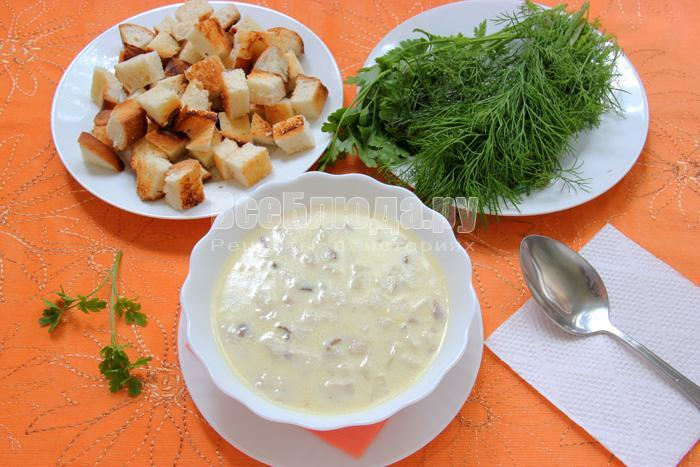 порция грибного супа из белых грибов