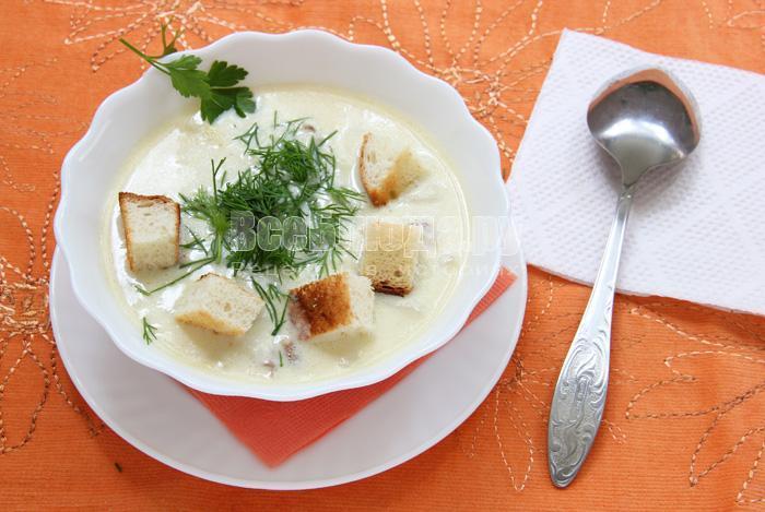 рецепт грибного супа с белыми грибами